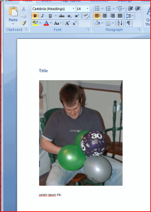 Offline Word document showing Linked and Embedded image